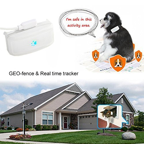 Mini Pet GPS Tracker Anti-lost Waterproof TKSTAR GPS LBS